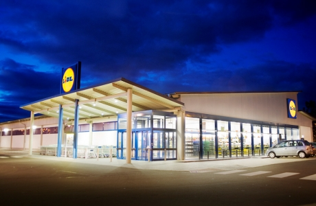 lidl-mold